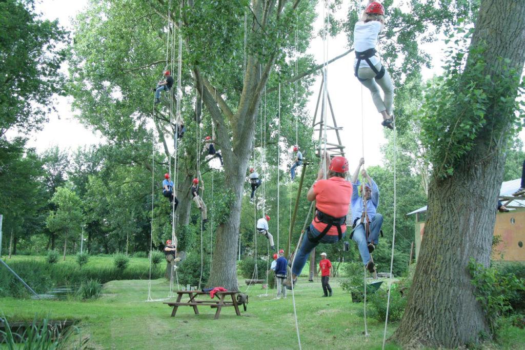 boomklimmen bedrijf