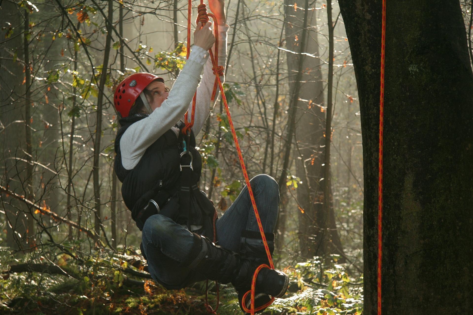 Boomklimmen bij The Treeclimbing Company